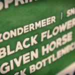 Black Flowers - NopPop (2016)